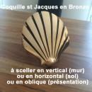 Coquille Saint Jacques en bronze poli